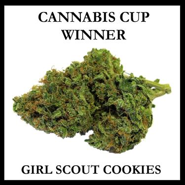 CANNABIS CUP WINNER Girl Scout Cookies