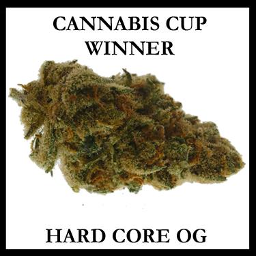 Hard Core Cannabis Cup Winner